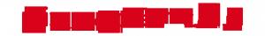 logo_pp_red (1)